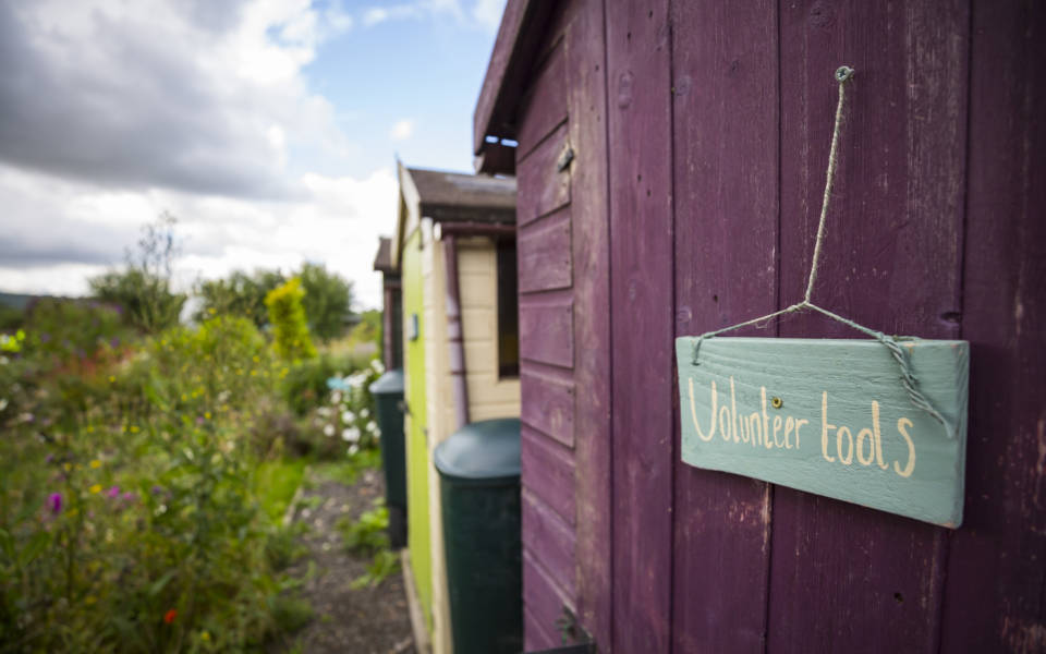 A row of multicoloured garden sheds with a door sign reading volunteer tools